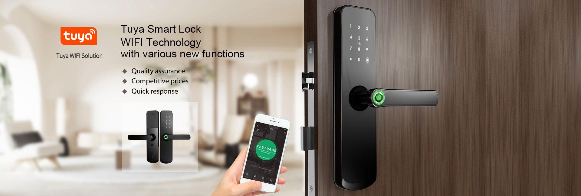 Tuya Door Lock Manufacturer