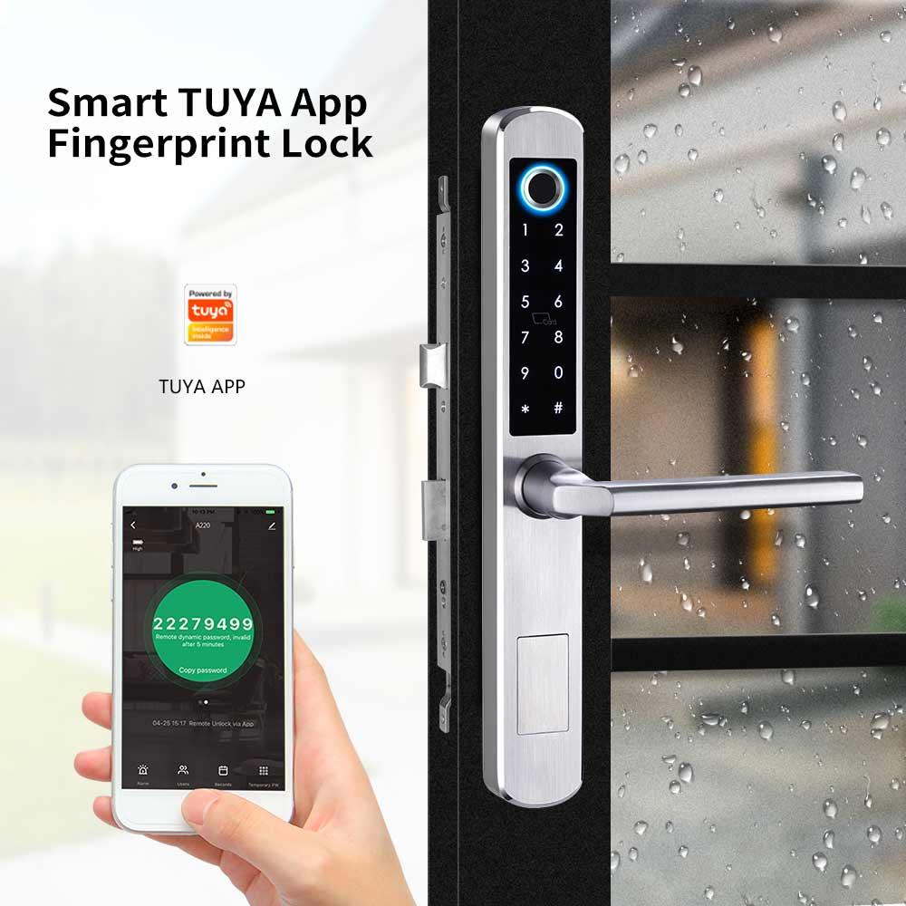 tuya smart door lock